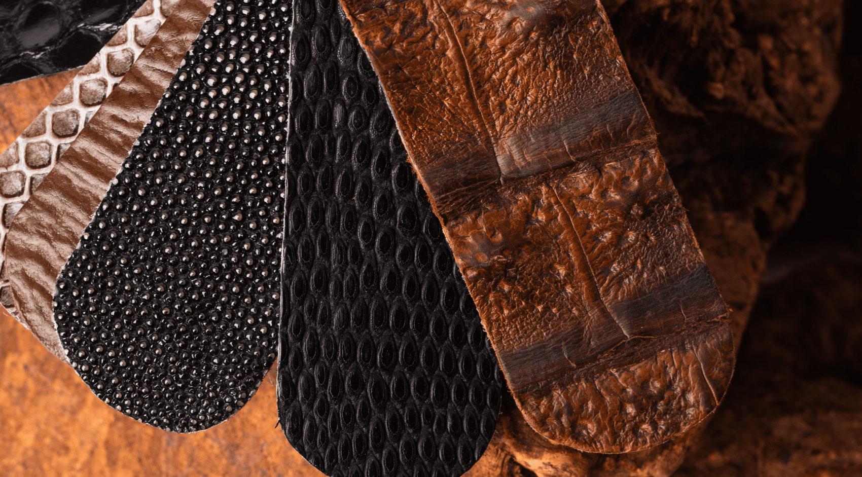 detalles de pieles exóticas muestras